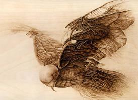 Woodburning - Bird by Eskarine