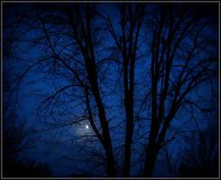 Luna by sarah5791