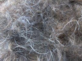 Fur Texture II by Slapfohrhasen