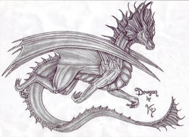 Dragon by MetalDragoness