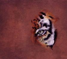 Panthera by ShadowKorin