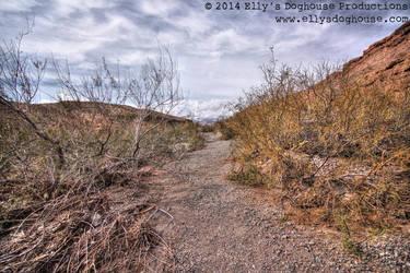 Nevada Beauty by ellysdoghouse