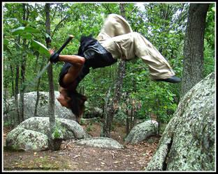 Ninja Rock Flip by ellysdoghouse