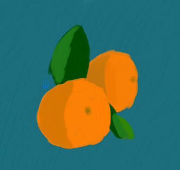 Oranges and leaves  by dsnano