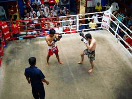 Thai Kick Boxing by alvse