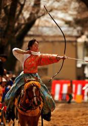 Women Warrior series by maxre