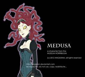 MEDUSA by Angilram
