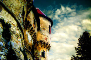 old castle by ironicna