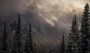 Winter Wind by MaciejKarcz