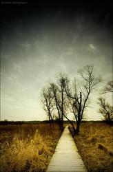Desolation of Mind by MaciejKarcz