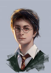 Harry Potter by superschool48