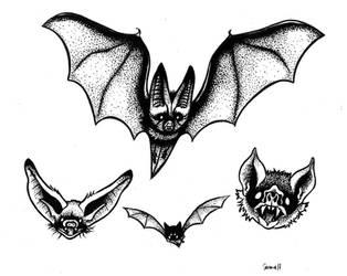 Band of Bats by Garance-Croville
