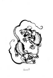Rats by Garance-Croville