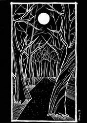 Black Forest by Garance-Croville