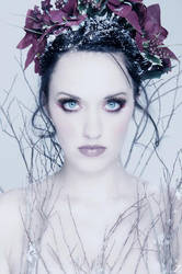 Miss Ashley - Winter Series by zairia