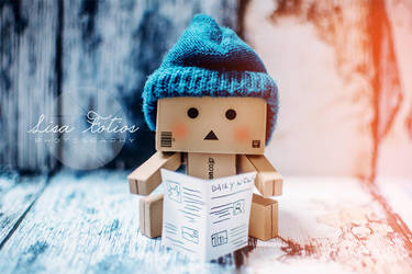 Danbo Reading by lisafotios