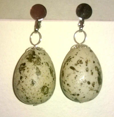 Earrings with fake eggs by Mutany