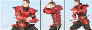 Dragon Armor by farmer by LeatherArtisans