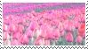 Tulips Stamp by Mockeri