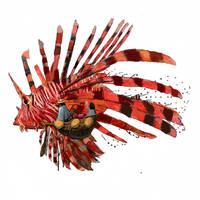 Lion fish by Mocaran