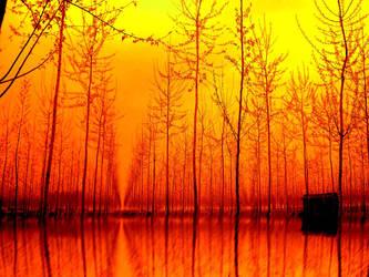 Rural sunset by nicolaperasso