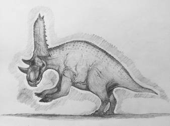 Day 14: Chasmosaurus russelli by LucaDeflorian