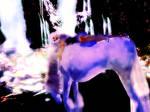 sl fantasy by silversouls