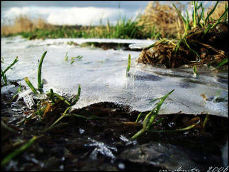 ice. by alltagsheldin