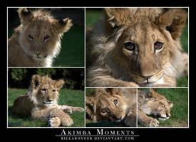 Akimba Moments by Billabonger