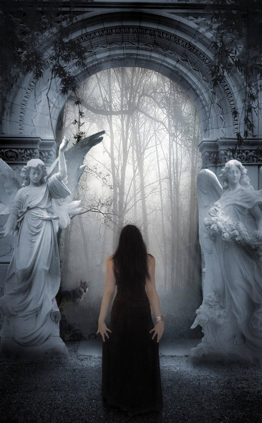 Enter My Realm by Senelfy