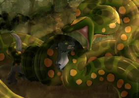 Anaconda's embrace by Inkanyamba