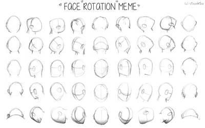 Face Rotation Meme by Vixenkiba