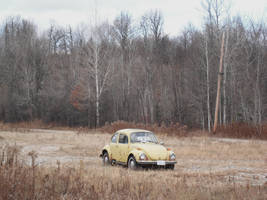 Rusted Beetle by Totaler