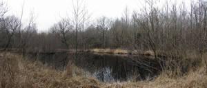 Black Pond - Panorama by s8472