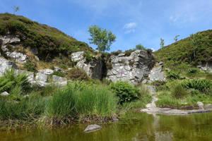 Rocks of Dartmoor III by s8472