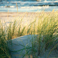 Beach by LightQuake-Theatre