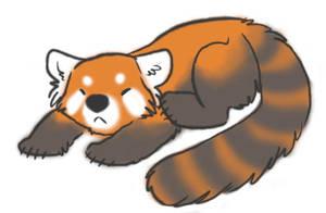 Red Panda cutenessss by Dipp