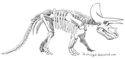 Dinovember day 1 - Triceratops Skeleton by DonKringel