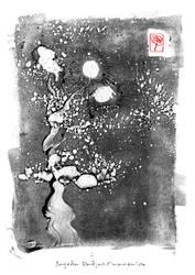 mono 19 by JPSiwanowicz