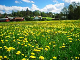 Swedish Country by Swebilius