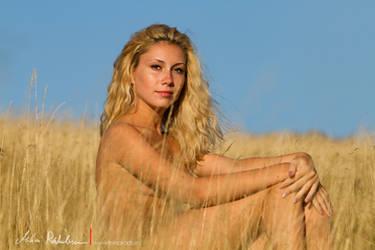 in the fields by ramihai