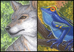 ACEO- Set1 by digital-blood