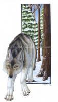 Winter Wolf Scene by digital-blood