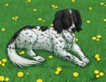 AC - Commish- Dog Portrait by digital-blood