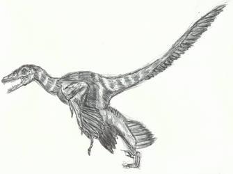 Prehistoric Animals: Sinornithosaurus by AnimationAndDrawings