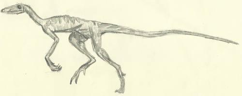 Prehistoric Animals: Lagosuchus (2017) by AnimationAndDrawings