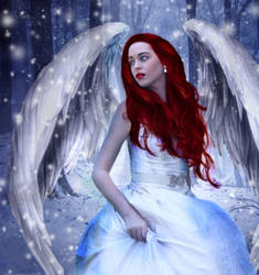 Winter angel by Duchess-bgd