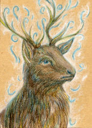 111 - ACEO / KAKAO - Dusty by malloth86