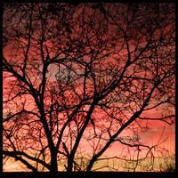 burning in the skies. by Bucikah
