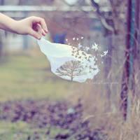 Lost dreams in a lost season by Bucikah